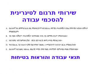 תרגום לטיגרינית תרגום מעברית לטיגרית בתמונה: הסכם מתורגם מעברית לטיגרית